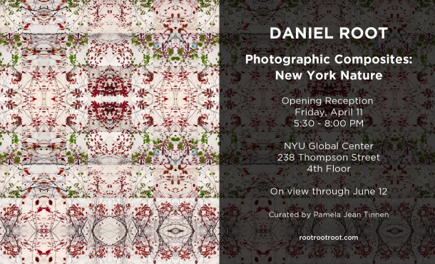 Daniel Root Apr11 opening NYU