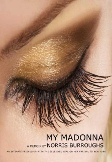A Madonna BookCover